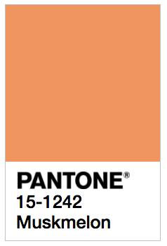 Pantone colour 15-1242 musk melon