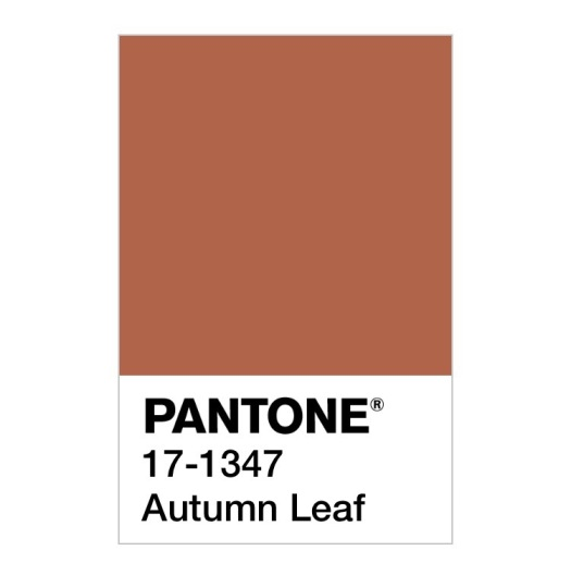 Pantone autumn leaf Pantone colour of the week