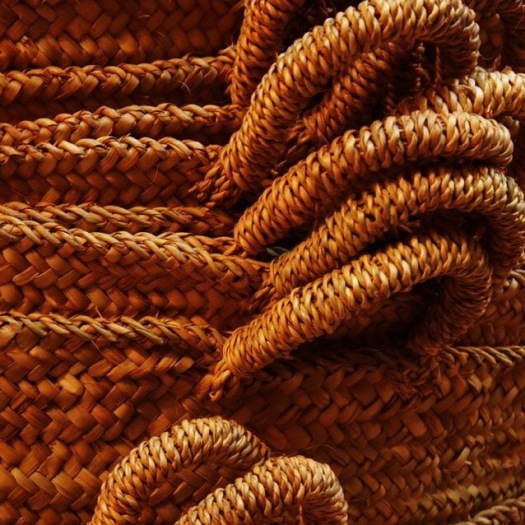 Pantone colour of the day autumn leaf rope